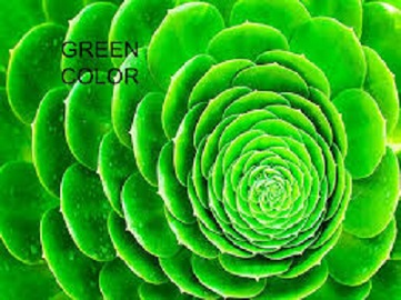 colour psychology - green