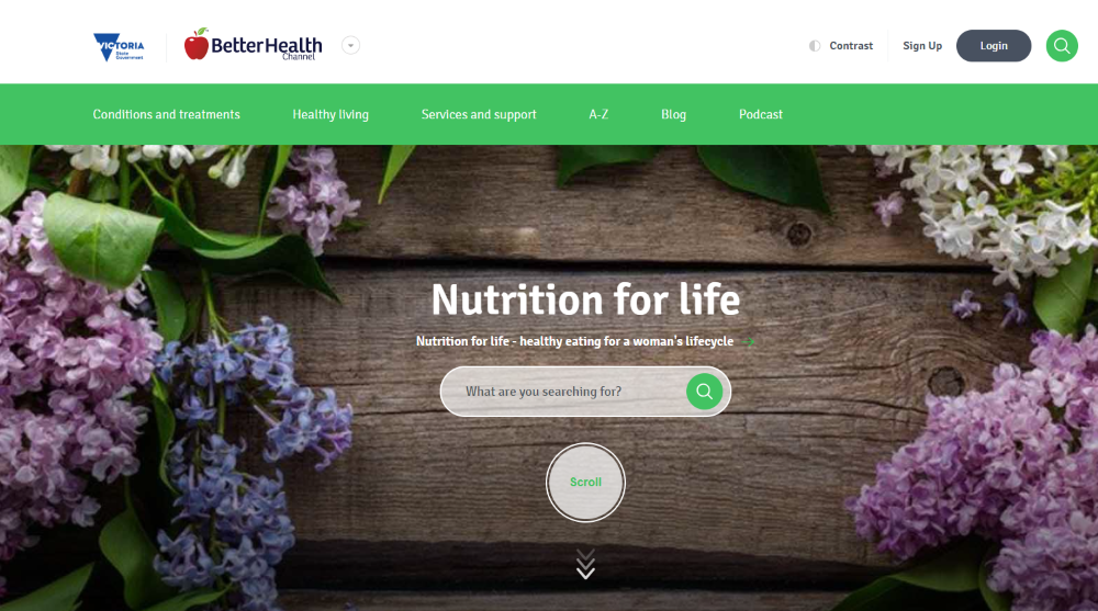 Building a Health Directory into your Practitioner Website