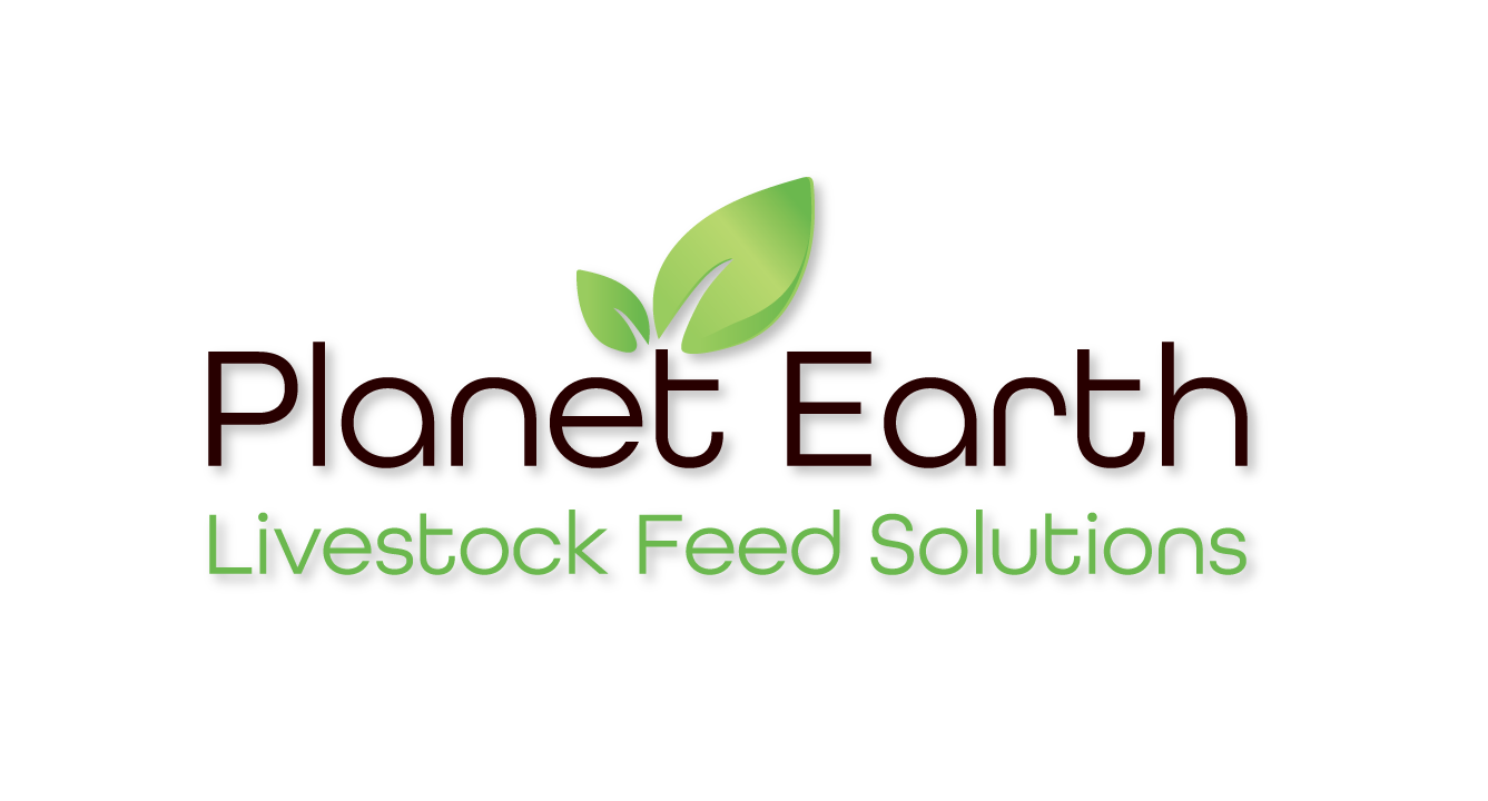 planet-earth-logo-1337x720px